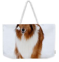 Lassie Enjoying The Snow Weekender Tote Bag by Shane Holsclaw