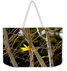 Weekender Tote Bag featuring the photograph Last Leaf by Kume Bryant