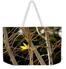 Last Leaf Weekender Tote Bag by Kume Bryant
