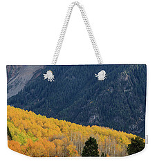 Weekender Tote Bag featuring the photograph Last Light Of Autumn Vertical by David Chandler