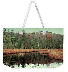 Weekender Tote Bag featuring the photograph Last Of Autumn On Fly Pond by David Patterson