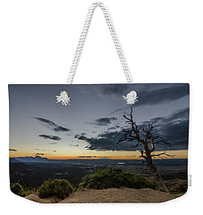 Weekender Tote Bag featuring the photograph Last Tree Standing by Margaret Pitcher