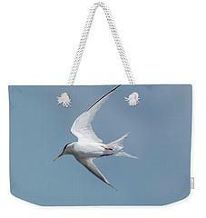 Laughing Gull In Flight Weekender Tote Bag