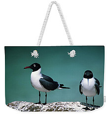 Weekender Tote Bag featuring the photograph Laughing Gulls by Sally Weigand