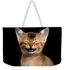Laughing Kitten  Weekender Tote Bag by Sergey Taran