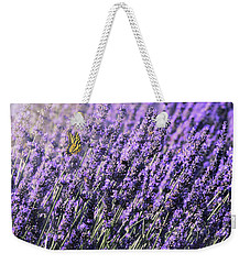 Lavender And Tiger Swallowtail In The Morning Light Weekender Tote Bag by Diane Schuster