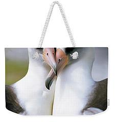 Laysan Albatross Phoebastria Weekender Tote Bag by Tui De Roy