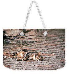 Weekender Tote Bag featuring the photograph Lazy Cat    by Silvia Ganora