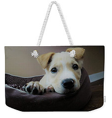 Weekender Tote Bag featuring the photograph Lazy Day by Aaron Martens