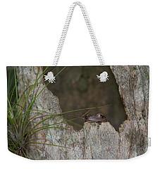 Lazy Tree Frog Weekender Tote Bag