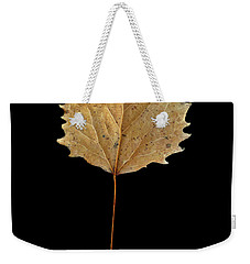 Weekender Tote Bag featuring the photograph Leaf 14 by David J Bookbinder