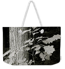 Leaf And Tree Weekender Tote Bag