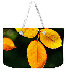 Leafs Over Water Weekender Tote Bag by Carlos Caetano