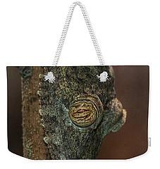 Leafy Tree Gecko  Weekender Tote Bag