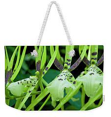 Leap Frog Weekender Tote Bag
