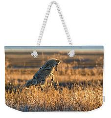 Leap Of Faith Weekender Tote Bag by Scott Warner