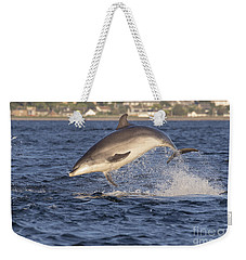 Jolly Jumper - Bottlenose Dolphin #40 Weekender Tote Bag