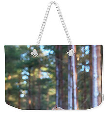 Leaping Red Squirrel Tall Weekender Tote Bag
