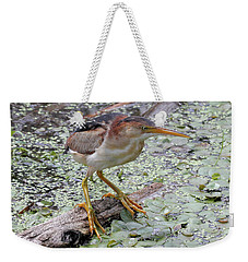 Weekender Tote Bag featuring the photograph Least Bittern by Doris Potter