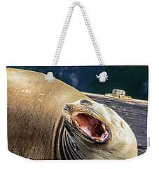 California Sea Lion Yawn Weekender Tote Bag