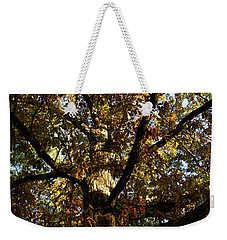 Leaves And Branches Weekender Tote Bag