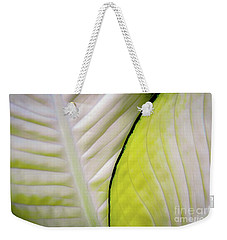 Weekender Tote Bag featuring the photograph Leaves In White by D Davila
