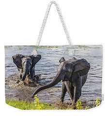 Leaving The River Weekender Tote Bag