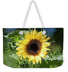Weekender Tote Bag featuring the photograph Lemon Queen In July by Jeff Severson