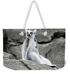 Lemur The Cutie Weekender Tote Bag