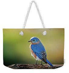 Lenore's Bluebird Weekender Tote Bag