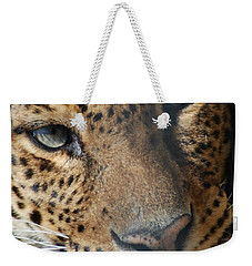 Weekender Tote Bag featuring the photograph Leopard Face by Richard Bryce and Family