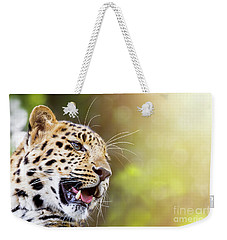 Leopard In Sunlight Weekender Tote Bag