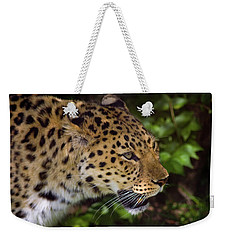 Weekender Tote Bag featuring the photograph Leopard by Steve Stuller