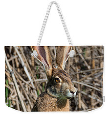 Lepus Californicus Weekender Tote Bag