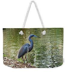 Lesser Blue Heron In Mating Plumage Weekender Tote Bag