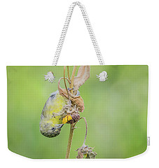 Lesser Goldfinch 4057-071117-1cr Weekender Tote Bag
