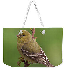 Weekender Tote Bag featuring the photograph Lesser Goldfinch by Doug Herr