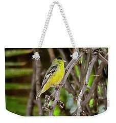 Weekender Tote Bag featuring the photograph Lesser Goldfinch H57 by Mark Myhaver
