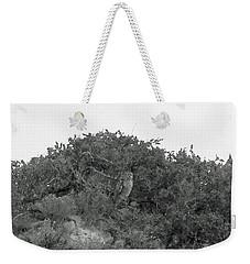 Lesser Horned Owl Weekender Tote Bag