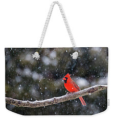 Weekender Tote Bag featuring the photograph Let It Snow by Mircea Costina Photography