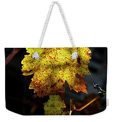 Weekender Tote Bag featuring the photograph Let The Sunshine In by Elaine Teague