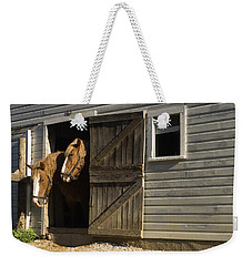Weekender Tote Bag featuring the photograph Let's Go Out by Sally Weigand
