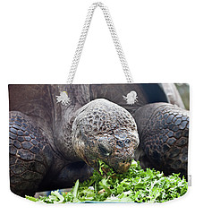 Weekender Tote Bag featuring the photograph Lettuce Makes You Strong by Miroslava Jurcik
