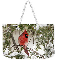 Weekender Tote Bag featuring the photograph Leucistic Northern Cardinal by Everet Regal