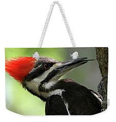 Lick It Up - Pileated Woodpecker Weekender Tote Bag