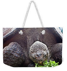 Weekender Tote Bag featuring the photograph Life Begins At 60 For Vegetarian by Miroslava Jurcik