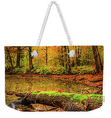 Weekender Tote Bag featuring the photograph Life Cycle by Dmytro Korol