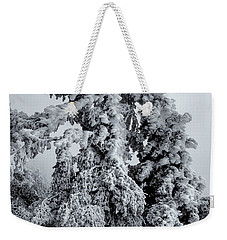 Weekender Tote Bag featuring the photograph Life On The Edge by Alan Vance Ley