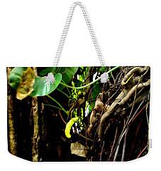 Life Weekender Tote Bag by Rushan Ruzaick