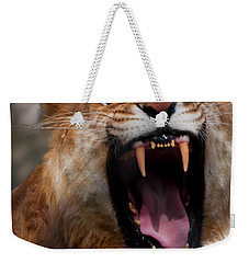 Weekender Tote Bag featuring the photograph Liger by Chris Flees